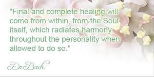 dr bach quote healing