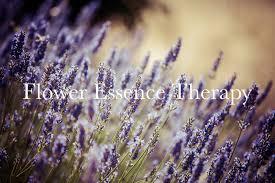 flower essence therapy.jpg